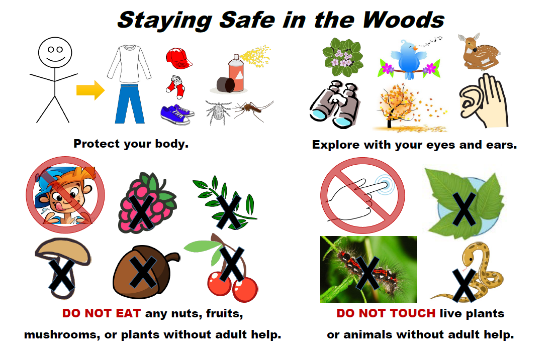 Staying Safe in the Woods